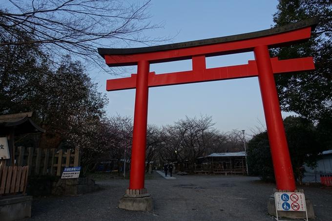 京都桜速報2018_01 No2