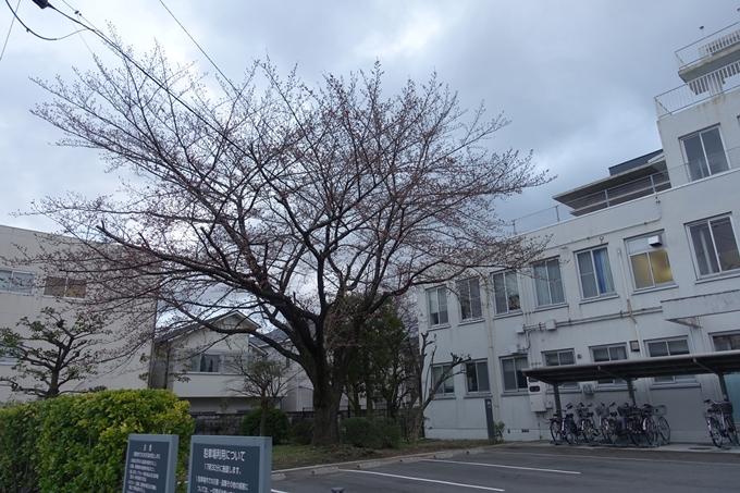 京都地方気象台 No5