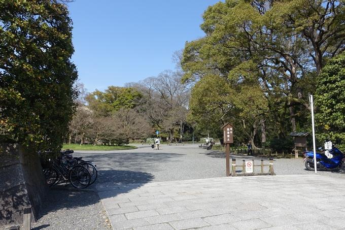 京都桜速報2018_04 No2