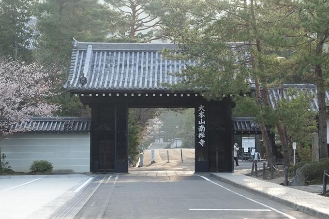 京都桜速報2018_08 No12