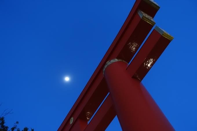 京都桜速報2018_09 No53