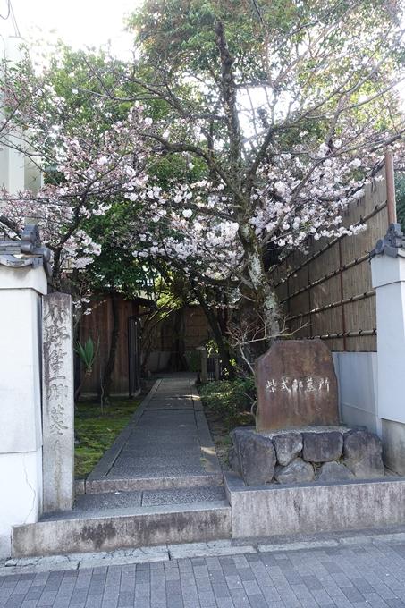 京都桜速報2018_11 No51