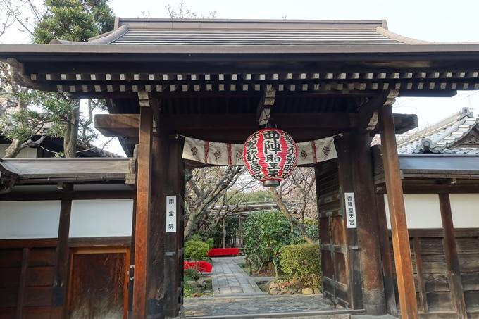 京都桜速報2018_12 No58