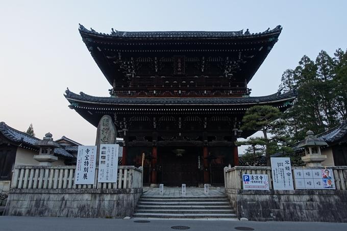 京都桜速報2018_12 No77