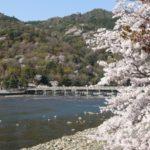 京都桜速報2018 その13 嵐山公園~渡月橋