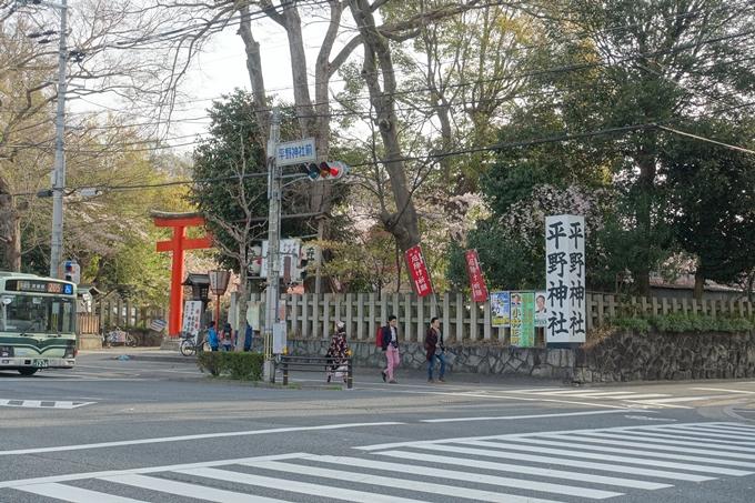京都桜速報2018_14 No2