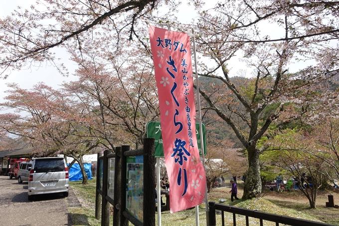 京都桜速報2018_23 No23