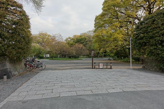 京都桜速報2018_24 No2