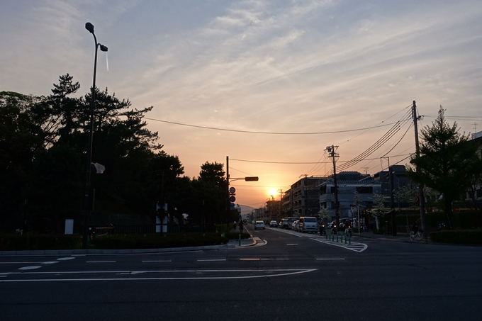 京都桜速報2018_25 No30