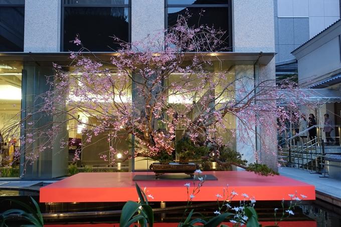 六角堂ライトアップ2018 No17