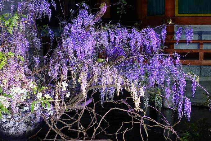 六角堂ライトアップ2018 No23