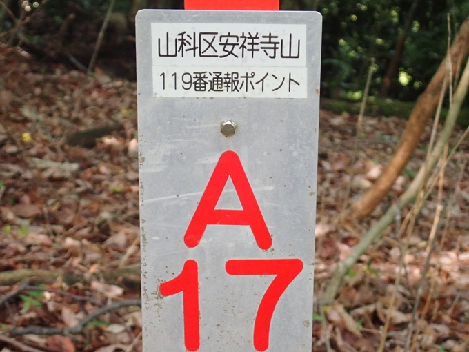 右大文字登山 No28