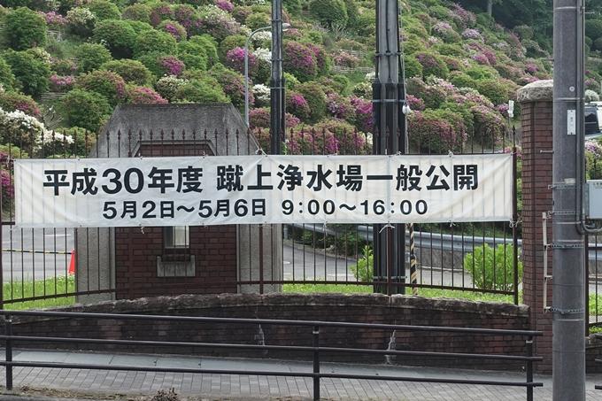 蹴上のつつじ02 No5