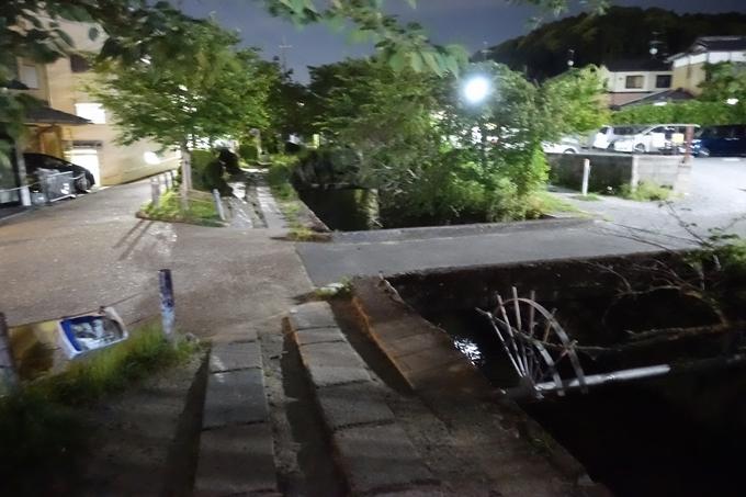 哲学の道 ホタル_2018 No11