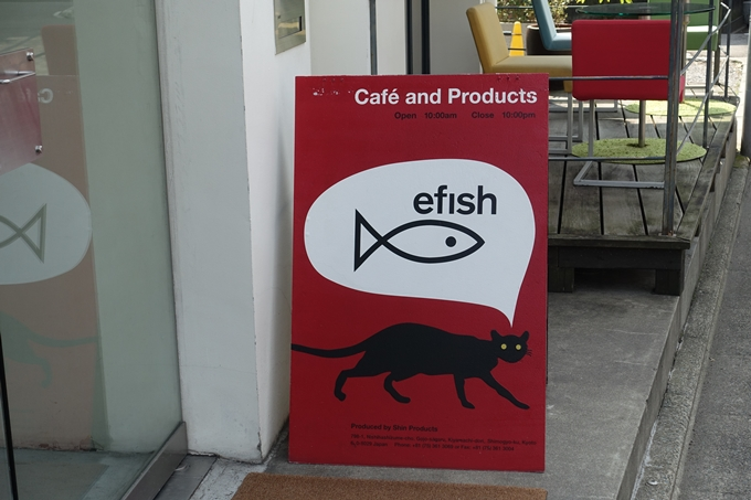 efish No3