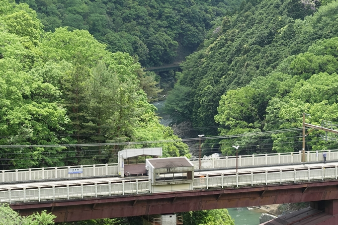 JR嵯峨野線_保津峡駅 No15
