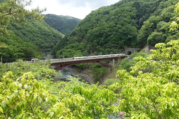 JR嵯峨野線_保津峡駅 No17