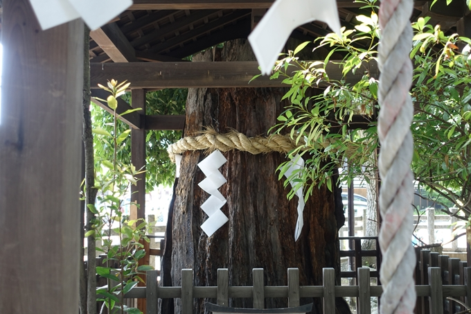 上桂御霊神社 No14