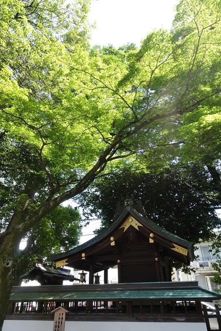 上桂御霊神社 No17