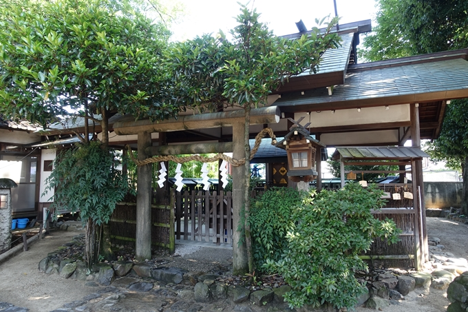 斎宮神社 No11