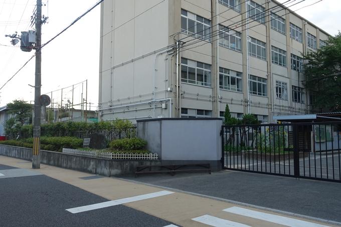 大映通り_金獅子賞 No3