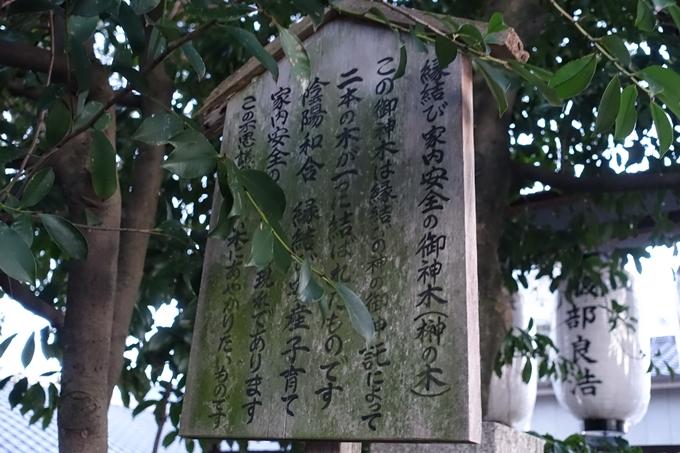 若宮八幡宮社 No21