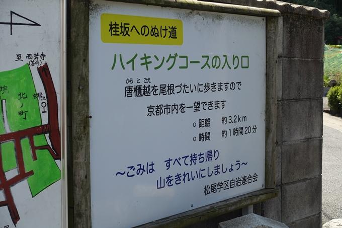 京都一周トレイル_西山 No3
