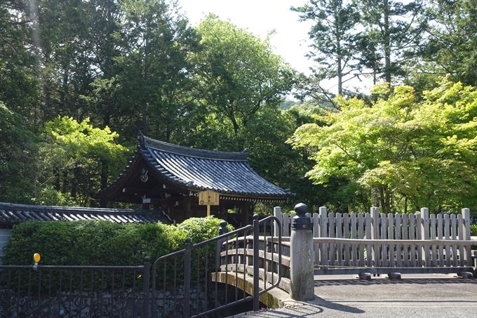 京都一周トレイル_西山 No8