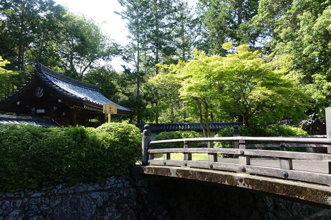 京都一周トレイル_西山 No9