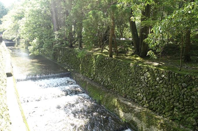 京都一周トレイル_西山 No11