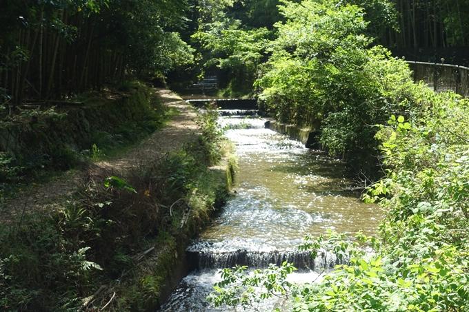 京都一周トレイル_西山 No15