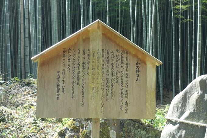 京都一周トレイル_西山 No19