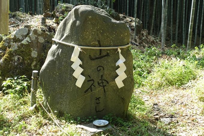 京都一周トレイル_西山 No20
