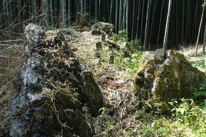 京都一周トレイル_西山 No21