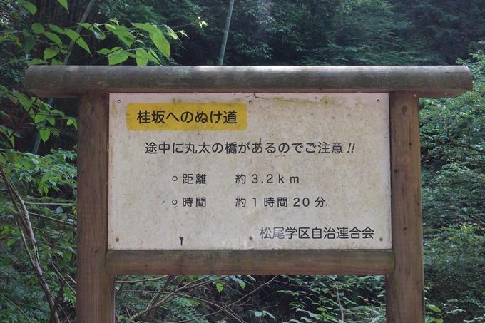 京都一周トレイル_西山 No23