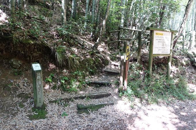 京都一周トレイル_西山 No27