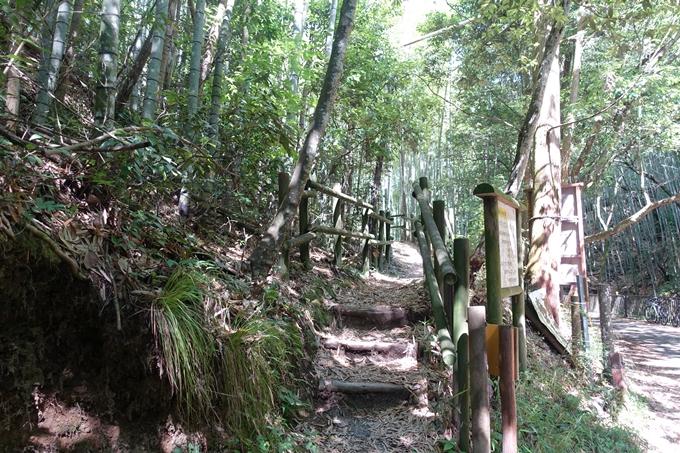 京都一周トレイル_西山 No29