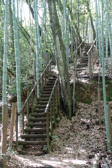 京都一周トレイル_西山 No30