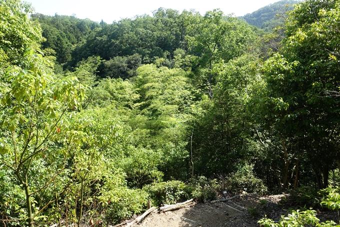 京都一周トレイル_西山 No32