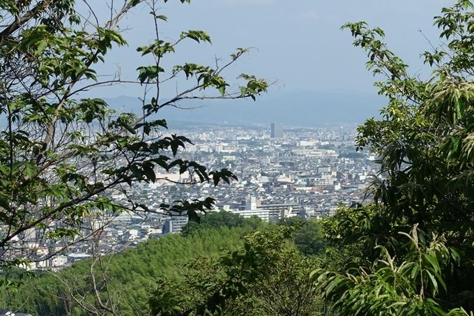 京都一周トレイル_西山 No35