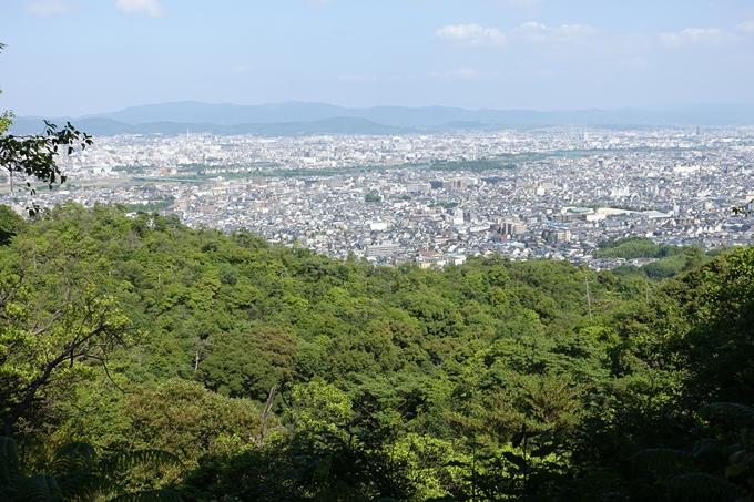 京都一周トレイル_西山 No39