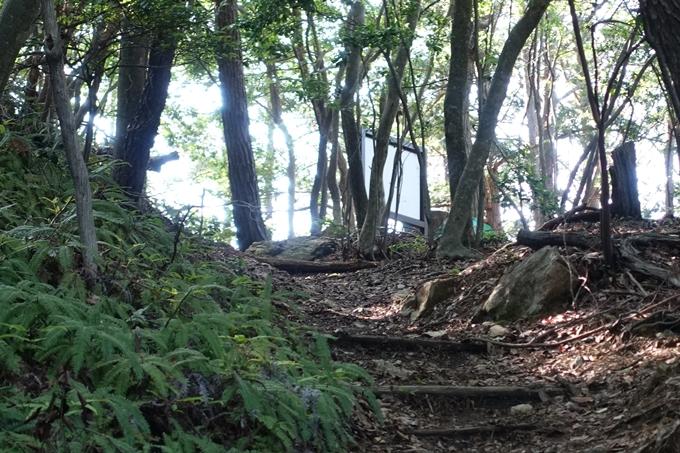 京都一周トレイル_西山 No53