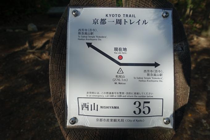 京都一周トレイル_西山 No61