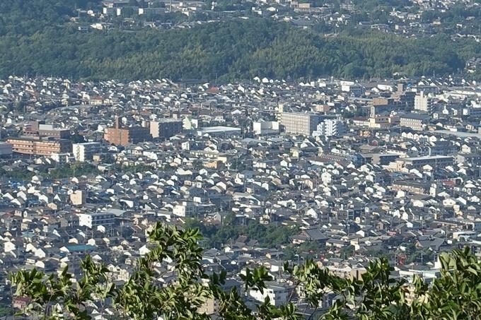 京都一周トレイル_西山 No77
