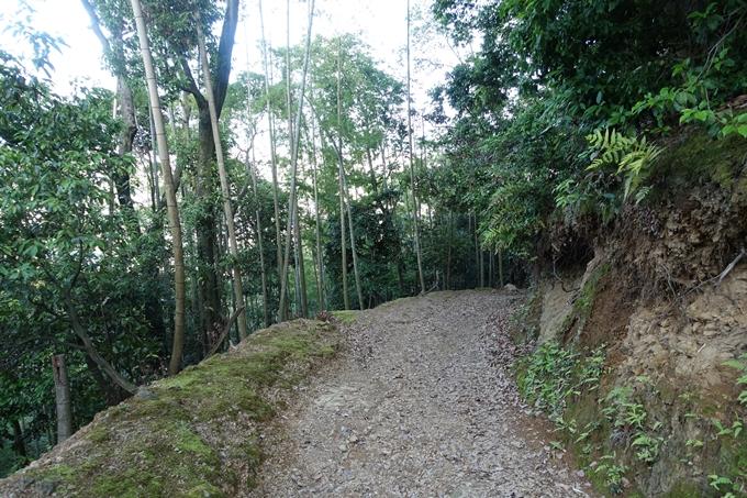 京都一周トレイル_西山 No84