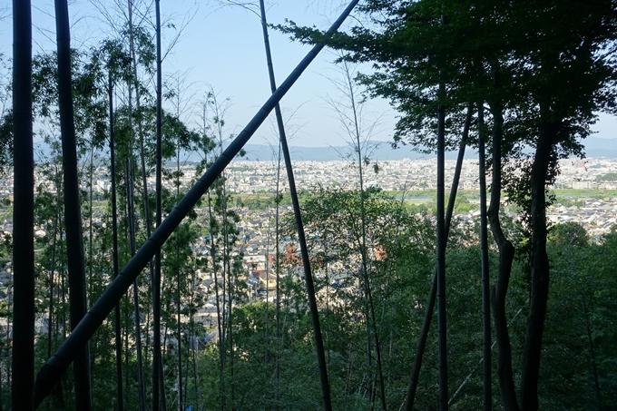 京都一周トレイル_西山 No85