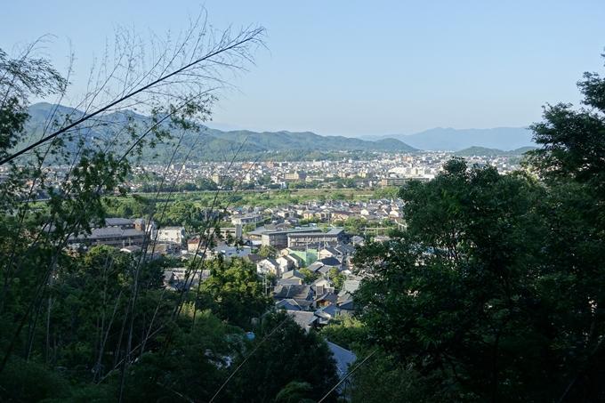 京都一周トレイル_西山 No86