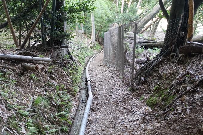 京都一周トレイル_西山 No89