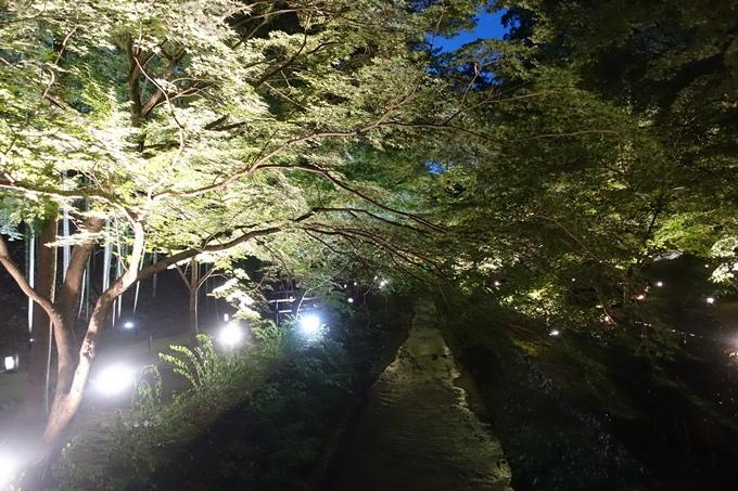 京の七夕2018_北野紙屋川エリア No21