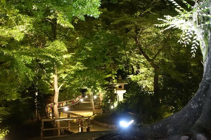 京の七夕2018_北野紙屋川エリア No29